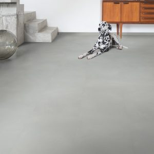 mascotas y suelos laminados